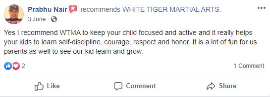 1, White Tiger Martial Arts  Wayne, NJ